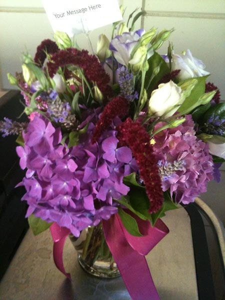 Purple hydrangeo flowers in vase